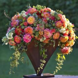 Růže GARTENSPASS polyantka 2L
