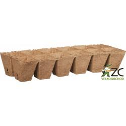 Rašelinový kontejner 6x6 cm plato 12ks